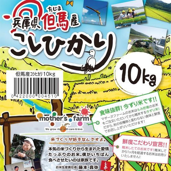 定期購入 10kgx6回 令和元2産 玄米 白米 今ずり米 無洗米 農薬不使用 コシヒカリ|arumama|02