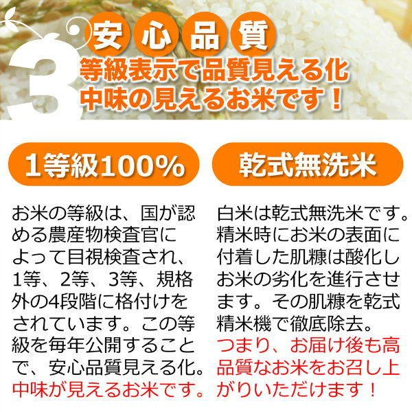 定期購入 10kgx6回 令和元2産 玄米 白米 今ずり米 無洗米 農薬不使用 コシヒカリ|arumama|07