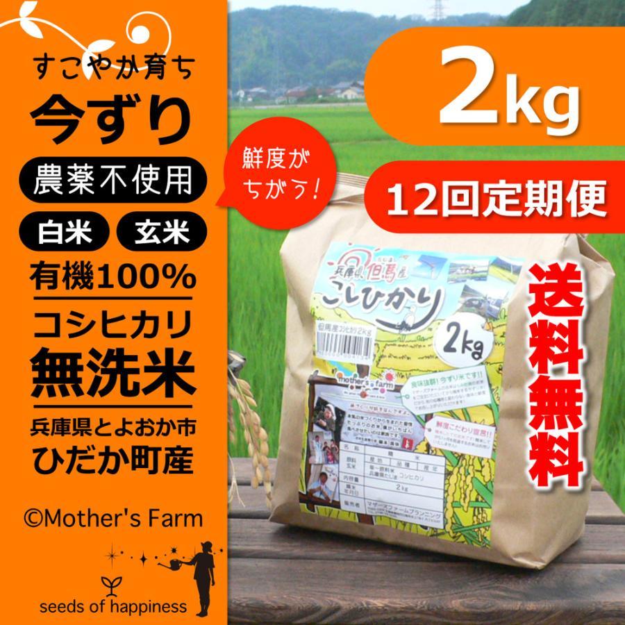 定期購入2kgx12回 令和2年産 玄米 白米 今ずり米 無洗米 農薬不使用 コシヒカリ|arumama