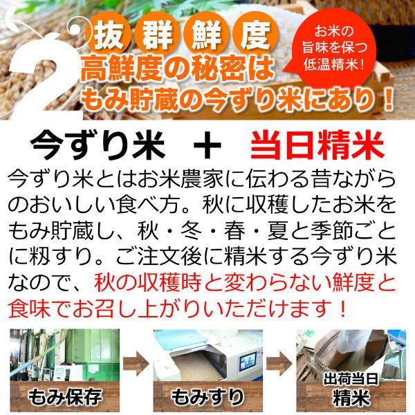 定期購入2kgx12回 令和2年産 玄米 白米 今ずり米 無洗米 農薬不使用 コシヒカリ|arumama|06