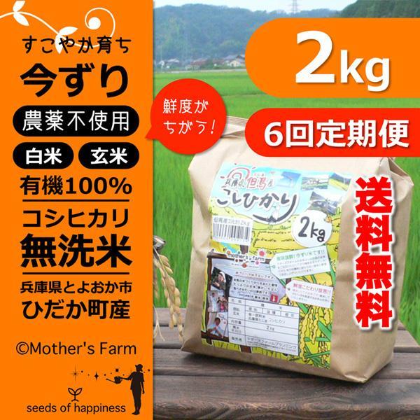 定期購入2kgx6回 令和2年産 玄米 白米 今ずり米 無洗米 農薬不使用 コシヒカリ|arumama