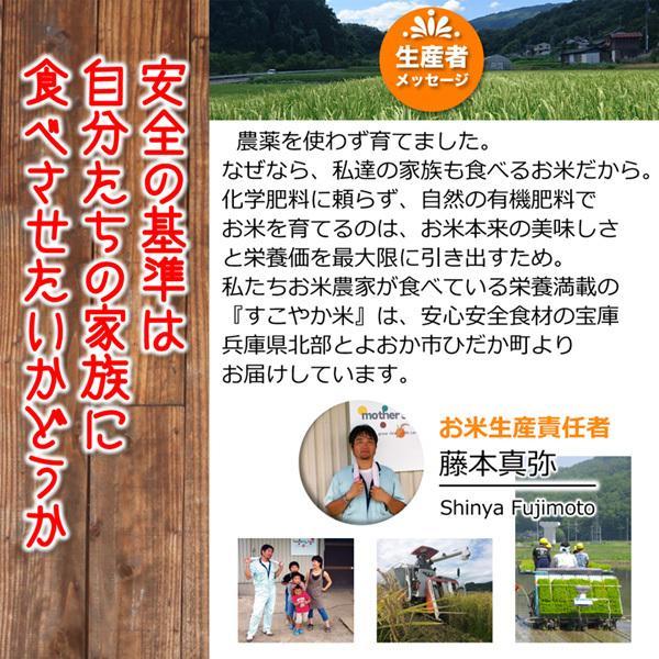 定期購入2kgx6回 令和2年産 玄米 白米 今ずり米 無洗米 農薬不使用 コシヒカリ|arumama|09