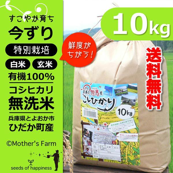 令和2年産 無洗米 コシヒカリ 玄米 白米 10kg 今ずり米 兵庫県 但馬産 arumama