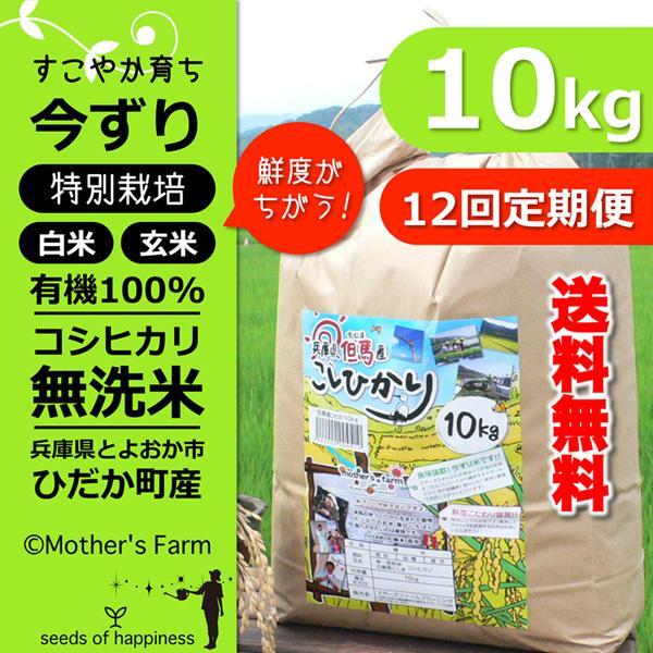 【定期購入】令和2年産 10kgx12回 玄米 白米 今ずり米 無洗米 減農薬·特別栽培米 コシヒカリ