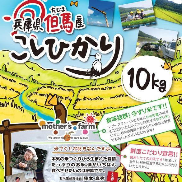 【定期購入】令和2年産 10kgx12回 玄米 白米 今ずり米 無洗米 減農薬・特別栽培米 コシヒカリ arumama 02