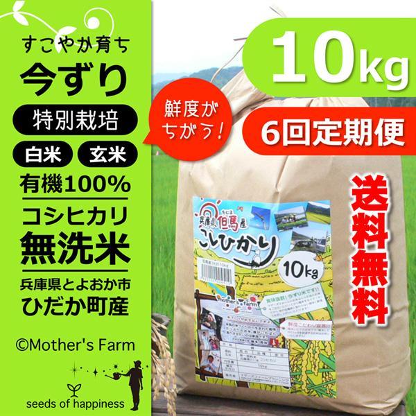 【定期購入】令和2年産 10kgx6回 玄米 白米 今ずり米 無洗米 減農薬・特別栽培米 コシヒカリ arumama
