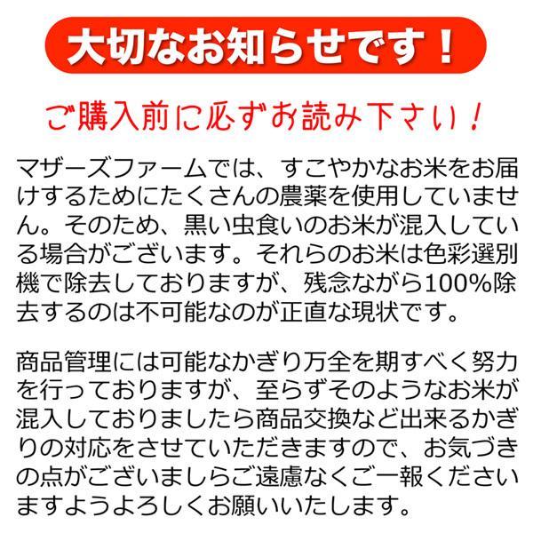令和2年産 無洗米 コシヒカリ 玄米 白米 10kg 今ずり米 兵庫県 但馬産 arumama 11