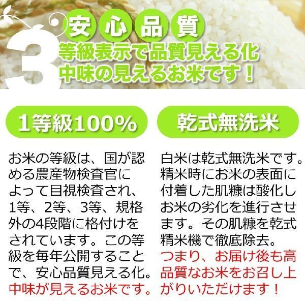 令和2年産 無洗米 コシヒカリ お試し 玄米 白米 3合 今ずり米 送料無料 ポイント消化|arumama|07