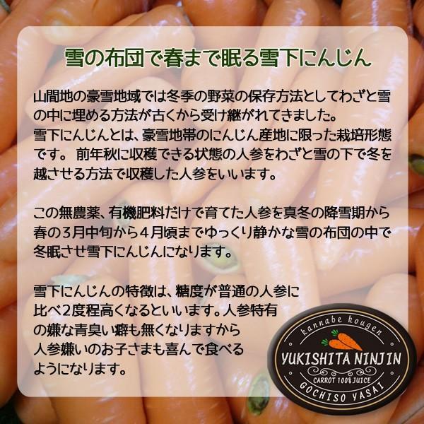 雪下人参ジュース 3本セット にんじん100% 農薬不使用 送料無料|arumama|03