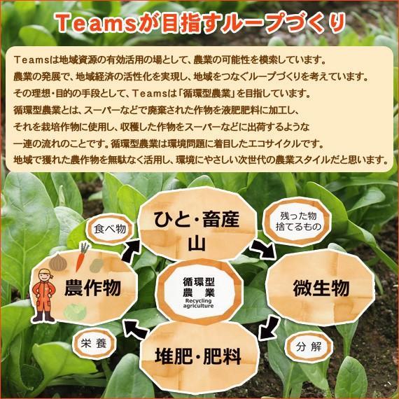 雪下人参ジュース 3本セット にんじん100% 農薬不使用 送料無料|arumama|05