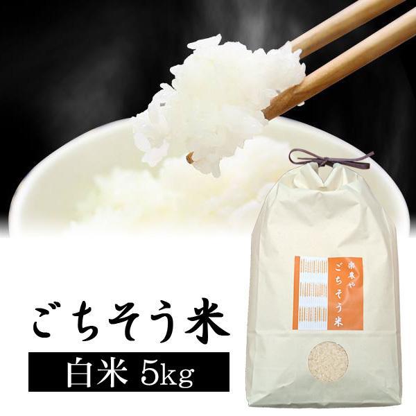 平成30年産 コシヒカリ 白米 神鍋のお米 5kg|arumama