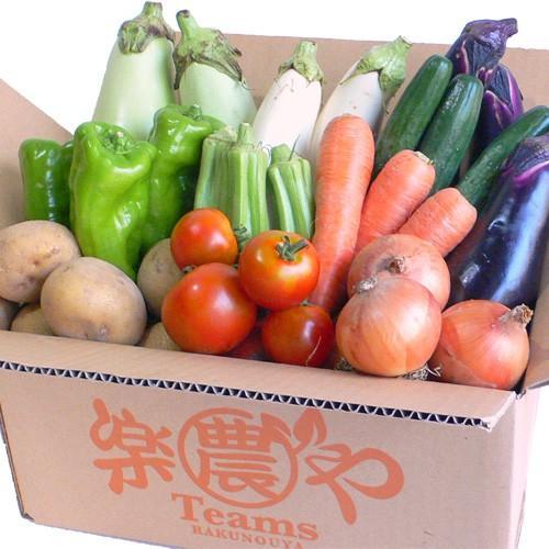 母の日 野菜セット 詰め合わせ お試し 農薬不使用 訳あり 不揃い 送料無料|arumama|06