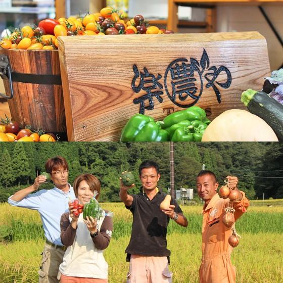 父の日 野菜 お米 詰め合わせ 満足セット 農薬不使用 訳あり 不揃い 送料無料 arumama 05