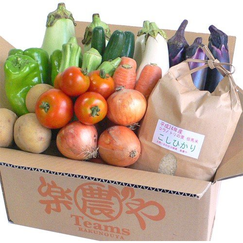 父の日 野菜 お米 詰め合わせ 満足セット 農薬不使用 訳あり 不揃い 送料無料 arumama 06