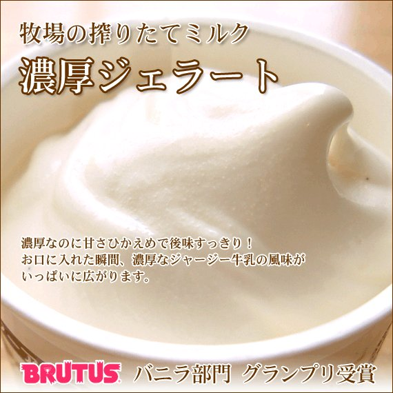父の日 業務用アイスクリーム 業務用アイス(4L バルク)|arumama|05