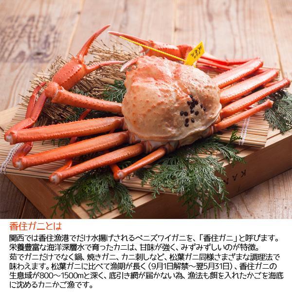 香住ガニ(2匹入り) 焼き・しゃぶセット ベニズワイガニ 生冷凍|arumama|05