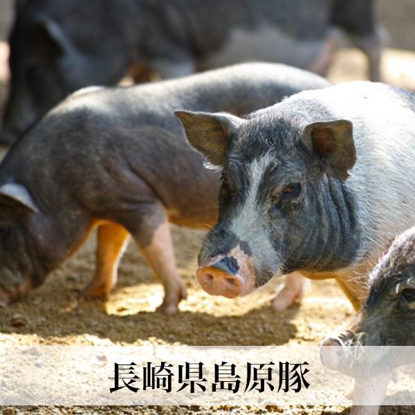 豚ロース厚切り2枚入 長崎島原豚 |asagohanhonpo|03