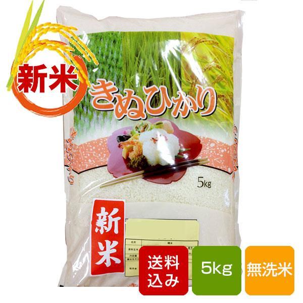 熊本県産 キヌヒカリ5kg 無洗米 一等米 お中元 ギフト