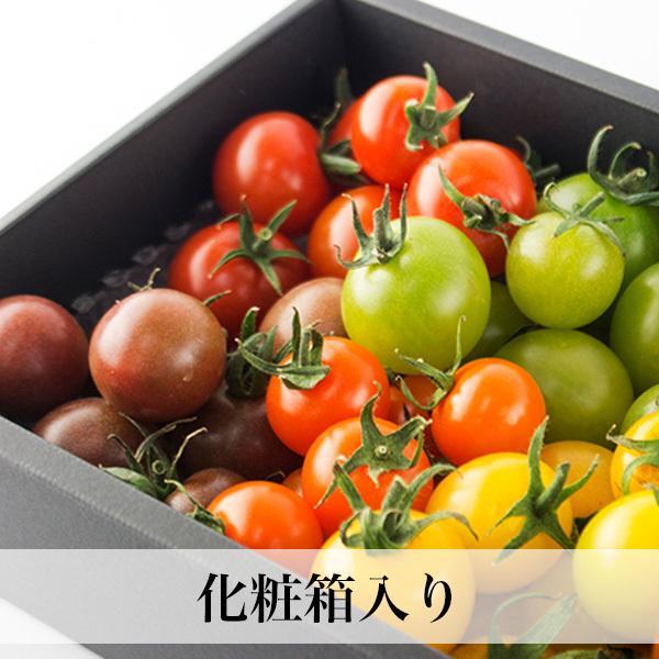 トマトの宝石箱 フルーツトマトの詰め合わせ 化粧箱入  お歳暮 ギフト クール便 asagohanhonpo 03