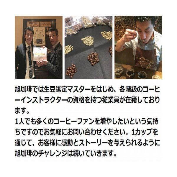 富士珈機 FUJI ROYAL 焙煎機 新型1kg R-101 フジローヤル 受注生産品  コーヒーロースター  コーヒー焙煎機|asahicoffee|11