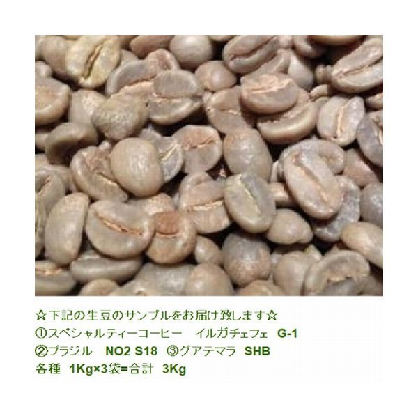 富士珈機 FUJI ROYAL 焙煎機 新型1kg R-101 フジローヤル 受注生産品  コーヒーロースター  コーヒー焙煎機|asahicoffee|08