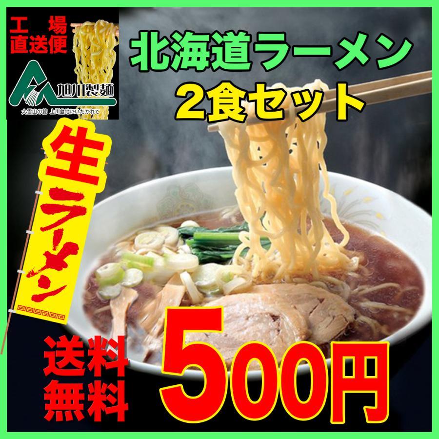 ポイント消化 送料無料 お試し 500円 メール便 北海道 旭川 生ラーメン2食セット asahikawaseimen