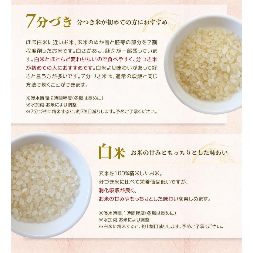 づき は と ぶ 米