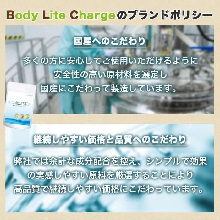 リジン サプリメント 国産 Lリジン サプリ 出さない 予防 対策 国内産 49500mg 180粒30日 L-Lysine EXTRA|asahiyanet|05