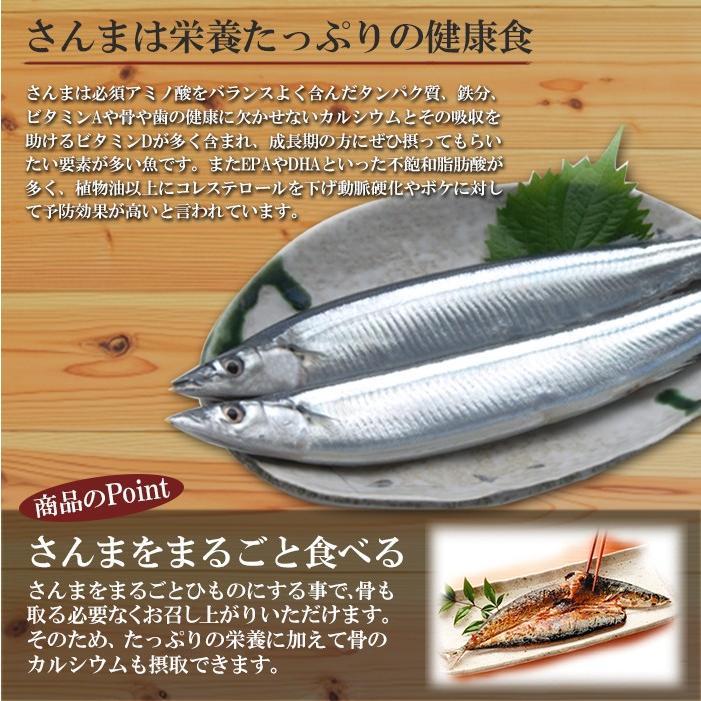 まるごとくん  さんまのひもの 国産 干物(常温・長期保存) asianlife 02