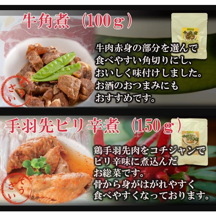 レトルト食品 おかず 和風惣菜 お肉 10種類 セット 詰め合わせ|asianlife|04