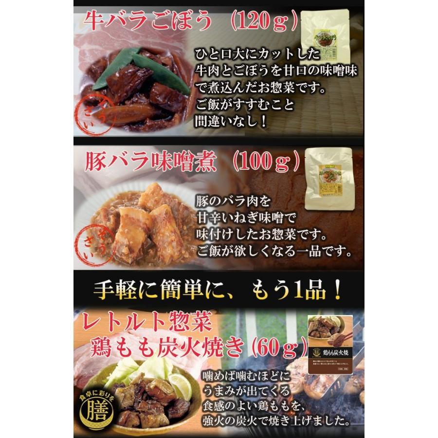 レトルト食品 おかず 和風惣菜 お肉 10種類 セット 詰め合わせ|asianlife|05