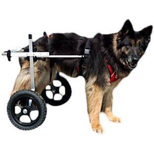 スタンダード(既製5サイズ)後脚サポート車いす(2輪) L (·30kg) ·ぺット用介護用品