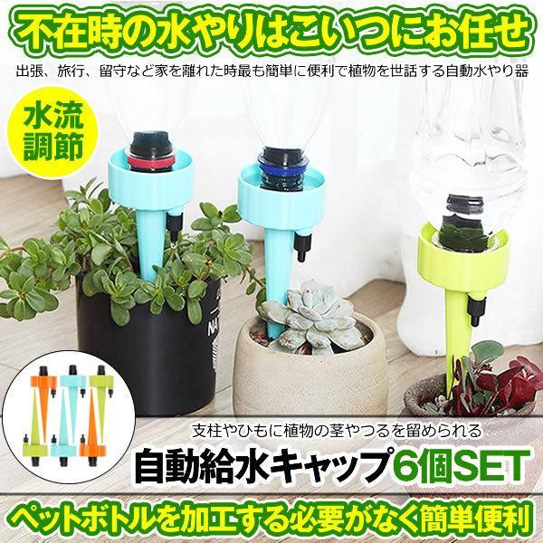 自動給水キャップ 6個セット 水やり当番 じょうろ 自動水やり器 植物 自動給水器 水遣り機 自動散水 システム ガーデニング 園芸 植物 盆栽 留守 DOKYU