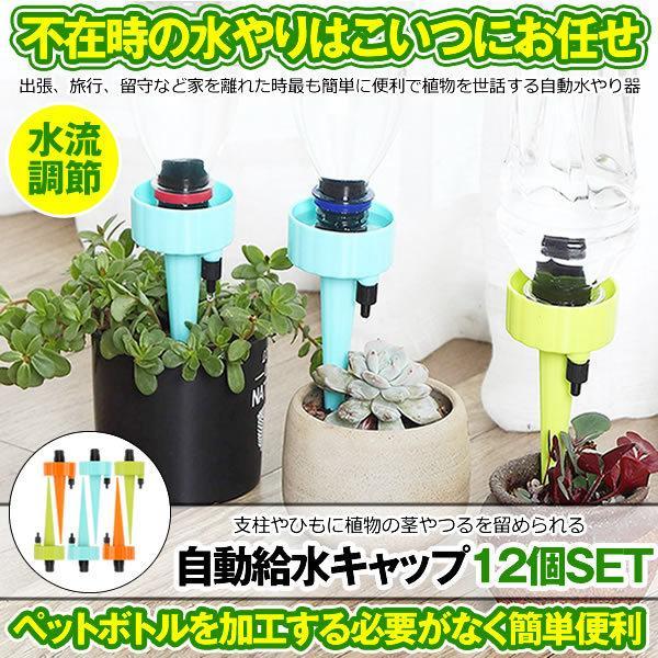 自動給水キャップ 12個セット 水やり当番 じょうろ 自動水やり器 植物 自動給水器 水遣り機 自動散水 システム ガーデニング 園芸 植物 盆栽 留守 DOKYU