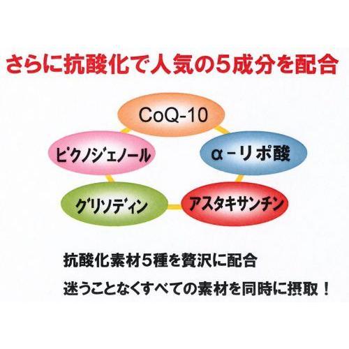 リカメンプラス(機能性食材) x3箱まとめ買い ssi健康食品 assi 02