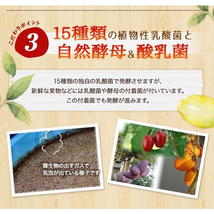 酵素ドリンク  置換え ファスティング ダイエット用 ASTALIVE アスタライブ  Beauty酵素170 720ml 梅味 ドリンクタイプ astalive 10