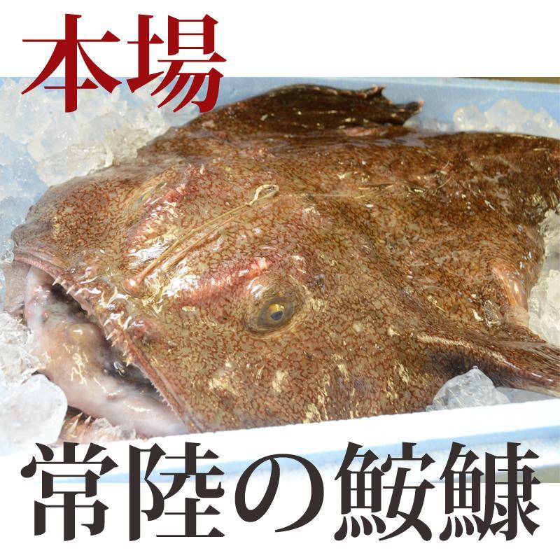 あんこう鍋セット(2人前) 送料無料 茨城 常陸 鮟鱇 国産 あん肝 aster-store 03