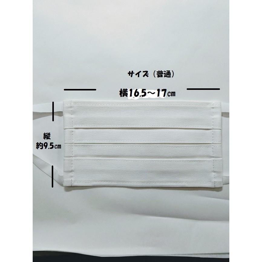マスク 洗えるマスク(2枚組)プリーツ変更|asutoro|07