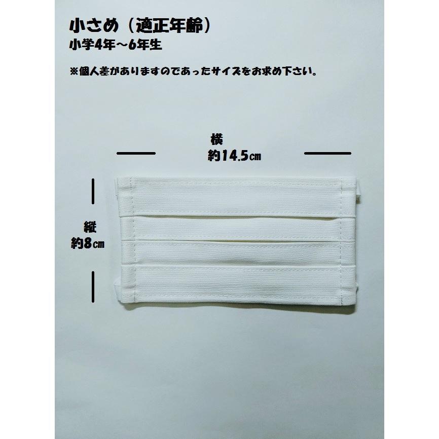 マスク 洗えるマスク(2枚組)プリーツ変更|asutoro|08