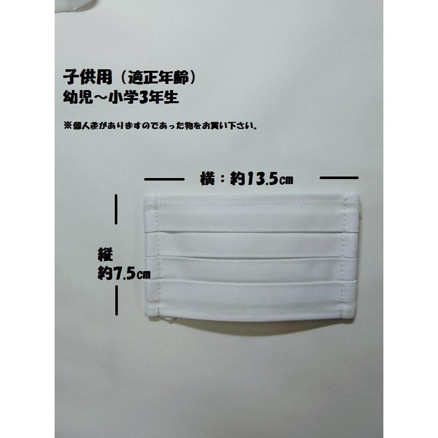 マスク 洗えるマスク(2枚組)プリーツ変更|asutoro|09