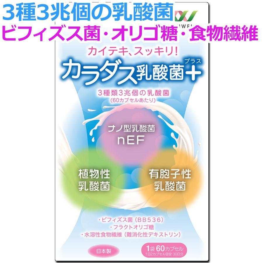 サプリ 乳酸菌