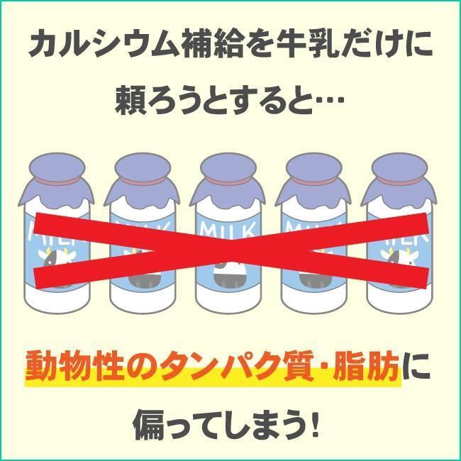 ジュニアプロテイン 子供用 ソイプロテイン 人工甘味料無添加 こども 亜鉛 身長 大豆 アストリション イチゴ味 60食分|athtrition|05