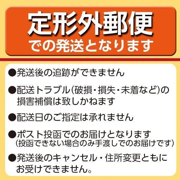 P&G ジレット カスタムプラス3 スムース 12本入り|atlife|02