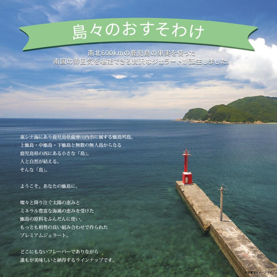 島旅ジェラート(8種)|atuskitchen|02