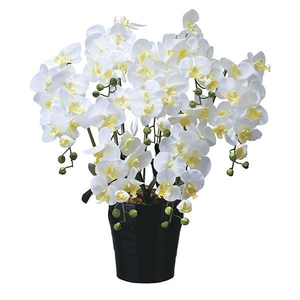 光の楽園 キング胡蝶蘭7本立W 451A200【Artificial flower Houseplant】【造花 人工 観葉 植物 ギフト アレンジメント アート イミテーション】