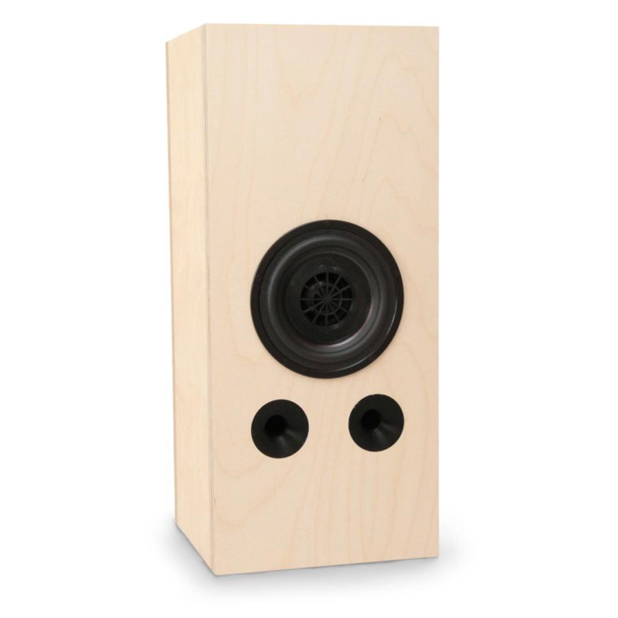 サブウーハー SW-1 【先行販売受付中(21年6月末まで)】(1本)|audifill