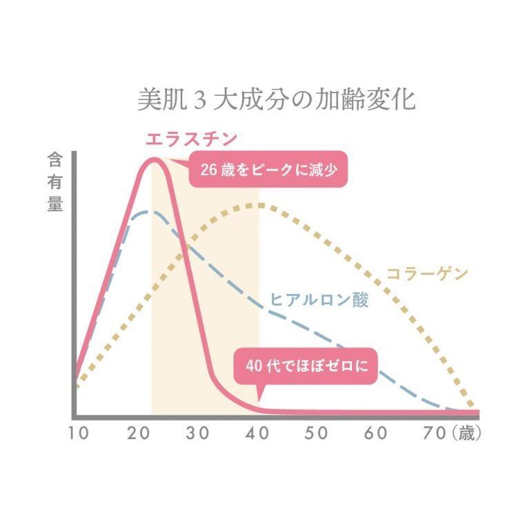 高純度エラスチンカプセル サプリメント100粒 季令キレイKIREI化粧品 サロン専売品 aurorastore 06