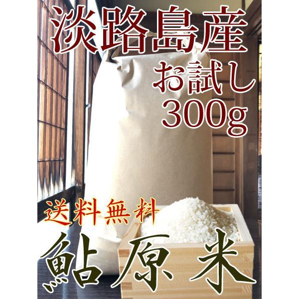 米 300g お米 淡路島 鮎原米 キヌヒカリ 2021年新米 鮎原産100%精米 送料無料 お試し ポイント消化|awabeji
