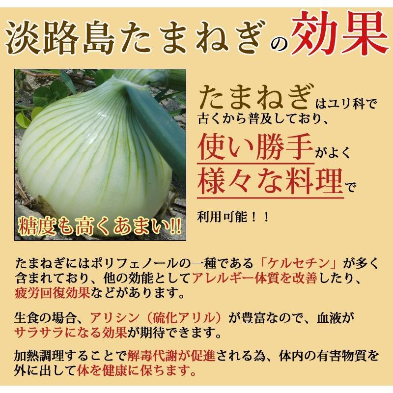 新たまねぎ 淡路島 送料無料 2021年産 特産 玉ねぎ 3kg M・L混合|awabeji|04