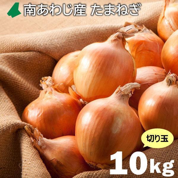 大収穫祭 百貨店 高品質 淡路島産 切り玉10kg 淡路島南あわじ産玉ねぎ